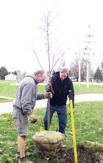 Lonny Huner, left, and Ben Rupp planted one of four royal raindrop crabapple trees Tuesday in memory of Perry Rupp. The former Clinton Township trustee and Fulton County Commissioner died July 22. The trees were planted at the corner of Linfoot Street and Glenwood Avenue in Wauseon by members of the Rupp family, including his wife, Jana, and their friends. The site will include a memorial marker.