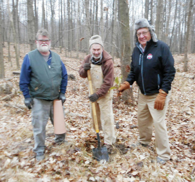 Wauseon Tree Commission members, from left, Dan Nelson, Rick Frey, and Jim Spiess planted a chestnut tree Dec. 12 as part of the Wauseon-Indian Hill Park project adjacent to Homecoming Park.