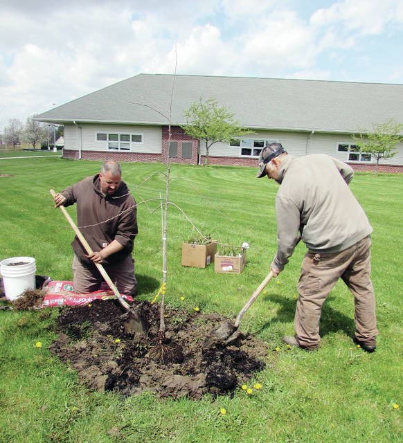 In honor of Arbor Day, John Alexander, left, and Larry Frey, of the Wauseon Public Works Department, planted a black gum tree April 26 at a ceremony at Wauseon Primary School. Each student was given a tree sapling to plant at home. Other guests included Mayor Kathy Huner and Tree Commission members James Spiess and Kim Bowles.