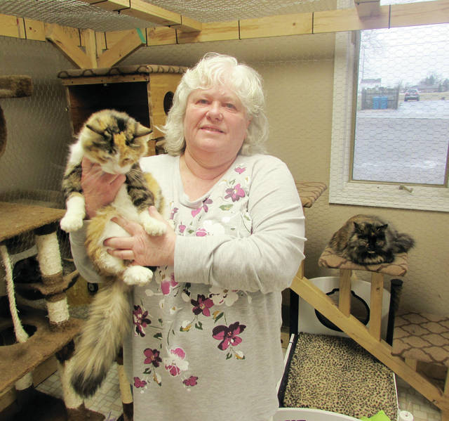 Fulton County Humane Society co-owner Tracey Wanners, holding a calico named Ginger, wants to help reduce the area's stray cat population.
