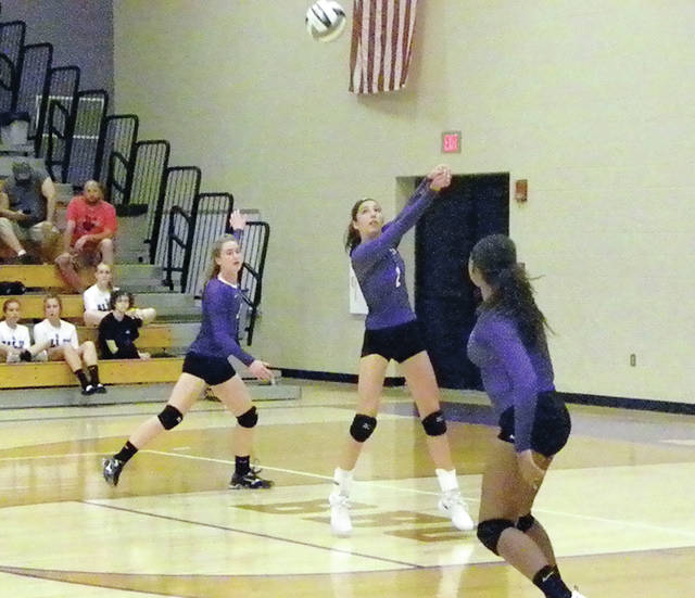 Alexis Sarvo of Swanton returns one during a match last season. She returns after being named first team All-NWOAL as a junior.