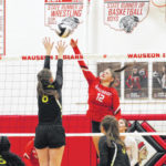 Area spikers honored by league