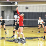 Wauseon spikers down Birds
