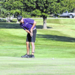 Swanton victorious, Wauseon runner-up at D-II golf sectional