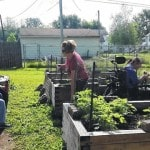 People's Garden takes shape at Agape