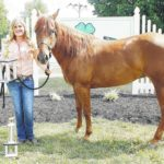 Goat, Alpaca and other winners at the fair
