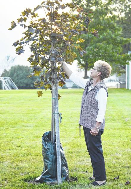Susan Bertsch, of Anna, looks at the Crimson King Maple that was planted by the Anna Local School District in honor of her retirement after 32 years working at Anna High School, 31 of those years as the secretary. The tree dedication ceremony was held Sunday, Sept. 17.