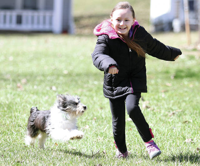 Shyann Adams, 9, of Sidney, daughter of Kimberly Johnson, runs from her aunt Ida Foster's puppy named Oscar Sunday, March 4. Shyann's younger brother Sterlin Powers was also playing with the pup in their backyard. Lots of people could be seen around Sidney walking their dogs Sunday on the sunny day.