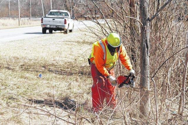 ODOT employee Michael Seger, of Versailles, Ohio, uses a chain saw to cut down dead trees recently along state Route 47 East of Port Jefferson along the Miami-Erie Canal.