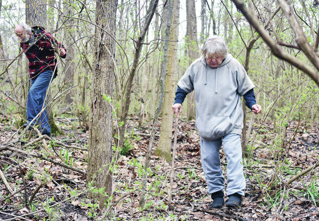 Tim, left, and Vicki Belt, of Sidney, look for morel mushrooms at Tawawa Park Tuesday, April 24. After looking for a while with no success Belt decided the prized mushrooms had not sprouted yet. Vicki Belt believes the mushrooms have become more scarce over the years. She remembers when her grandpa would go looking for them and come back pulling a small children's wagon full of morels.