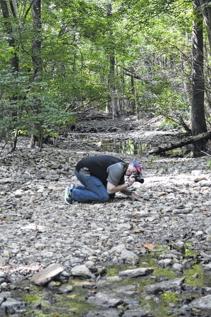 Richard Cartwright, of Piqua, does what it takes to get a good photograph of a turtle (atop a rock, lower right). His work will be for sale during the Tawawa Park 70th anniversary celebration, June 30.