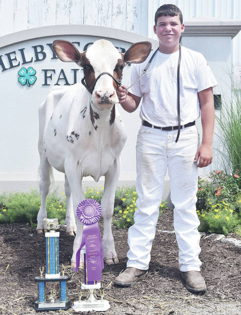 Blake Greiwe, 15, of Quincy, son of Jeremy and Season Greiwe, member of Fairlawn FFA, won grand champion Ayrshire and Intermediate showmanship at the Shelby County Fair.