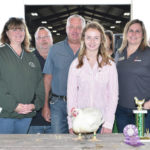 Grand and reserve champion chickens