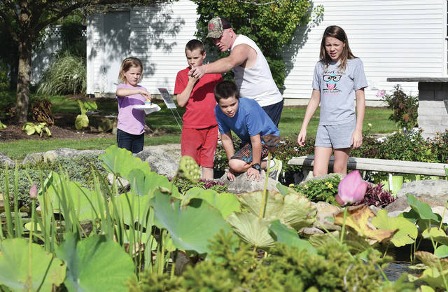 Looking over a koi pond at Kah Nursery are, left to right, Paige Seger, 6, Dominic Seger, 10, Chad Seger, Corbin Seger, 9, and Lexi Seger, 12, all of Minster, Sunday, Sept. 16. The kids and their parents Chad and Kelly Seger, came to Kah Nursery as a stop in the 2018 Shelby County Drive-It-Yourself Ag Tour in northern Shelby County. The other farms on the tour were Bambauer Fertilizer & Seed, K&K Dairy Inc. and Dave and Patty Mann Family Farms. The Shelby County Master Gardeners had a display at Kah Nursery.