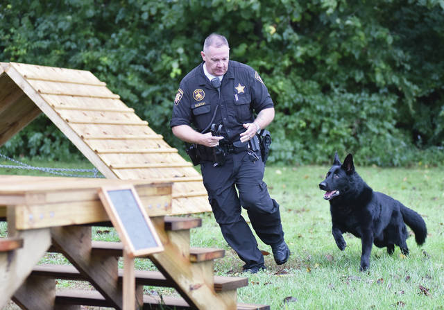 Shelby County Sheriff's Deputy Frank Bleigh runs his 11-year-old German shepherd K-9 Officer Colt through a new obstacle course behind the Shelby County Sheriff's Office Wednesday, Sept. 26. The course is an Eagle Scout project built by Anna Boy Scout Troop 301 member Merrick Fox.