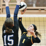 Sidney athletes earn all-GWOC honors