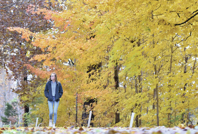 Haylee Klikovits, of Sidney, walks through Tawawa Park Friday, Nov. 2, to look at the fall leaves and photograph them with her phone.