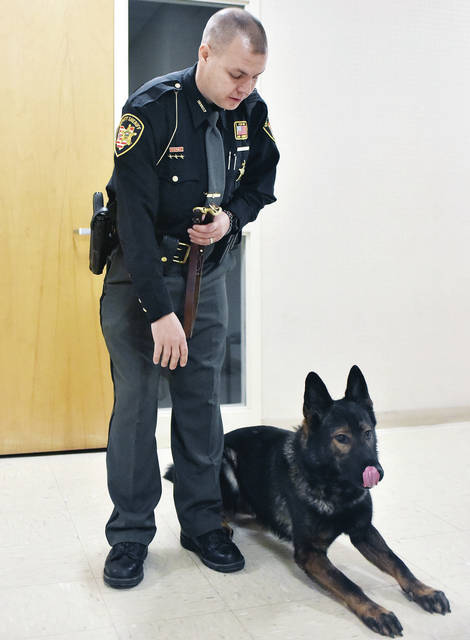 Shelby County Sheriff's Deputy Rod Robbins orders his new K-9 partner, Yago, to lay down at the Shelby County Sheriff's Office Wednesday, Nov. 21.