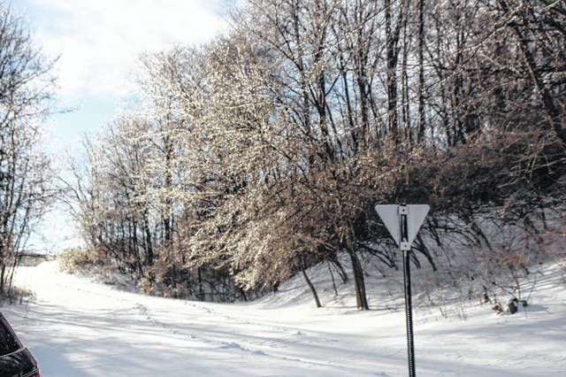 A snow-covered road through Tawawa Park in Sidney is bordered by trees, glistening in their icy dresses, Sunday, Jan. 20.
