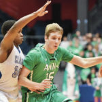 Boys basketball: Anna's Griffin Doseck named 1st team all-Ohio in D-III