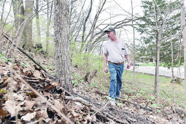 Steve Simons, of Sidney, looks for morel mushrooms in the Tawawa Park area. Simons had found three small morel mushrooms as of 1 p.m. on Wednesday, April 17. Simons said it was early in the season so the mushrooms were just starting to come up.
