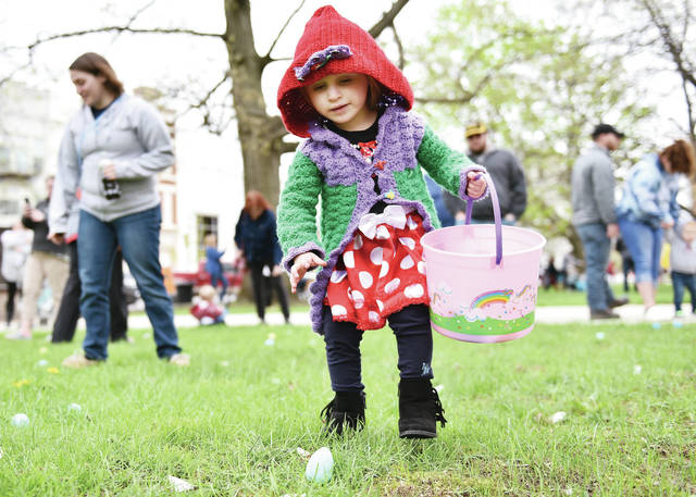 Elliana Spurgeon, 2, of Huber Heights, daughter of Andrea and Andrew Spurgeon, spots an egg during the Sidney Alive Courtsquare Easter egg hunt Saturday, April 27. The hunt had been postponed due to rain. Elliana's family was in town visiting family. Andrea grew up in Anna and Andrew grew up in Sidney.