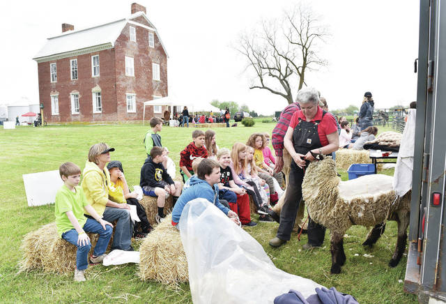 Jan and Harry Noah, of Maplewood, demonstrate how people used to shear sheep at the Wilson-Lenox-Ditmer House near Hardin Tuesday, May 7. Students gathered at the house to do old fashioned activities as part of the ongoing Shelby County Bicentennial celebration events this year.