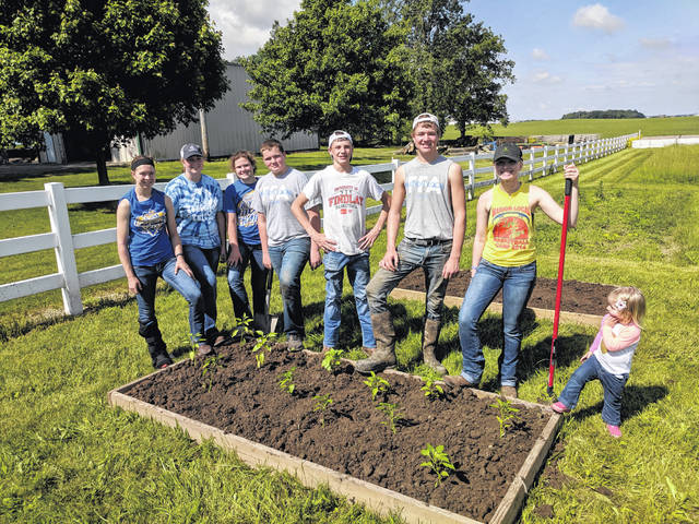 Members of the Marion Local FFA have partnered with the Maria Stein Shrine on the community garden, which is located at the shrine.