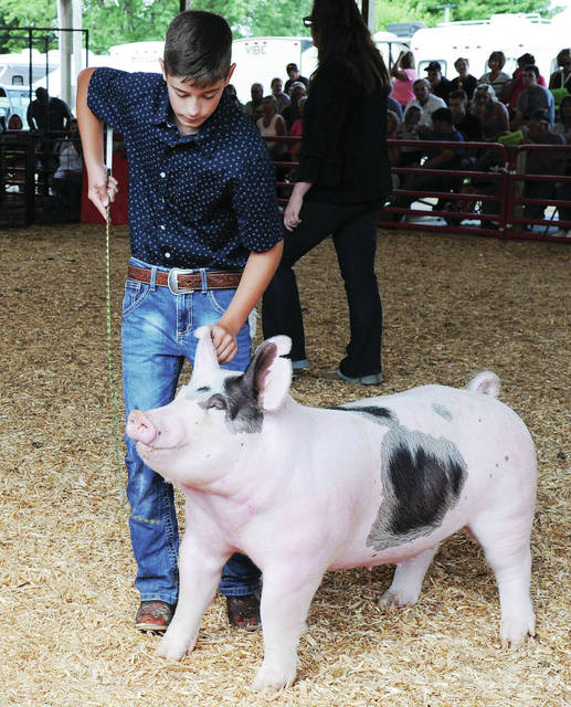 Jacob Yenser, 14, of Botkins, son of Jacob Yenser and Donna Finkenbine, shows a market gilt at the Shelby County Fair on Wednesday, July 24.