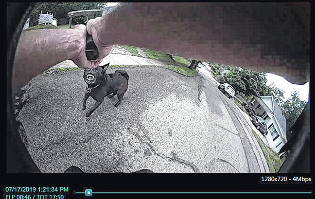 This is a still photograph taken from the body cam worn by the Sidney Police Officer involved in a fatal dog shooting Wednesday.