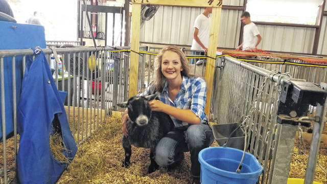 Macie Verdier, 14,a member of the Successful 4-H Club, has shown goats for five years at the Shelby County Junior Fair goat show.