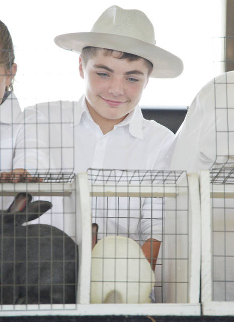 Alex Poeppelman, 13, of McCartyville, son of Laura and Tom Poeppelman, shows his single fryer rabbit at the Shelby County Fair Monday, July 22.