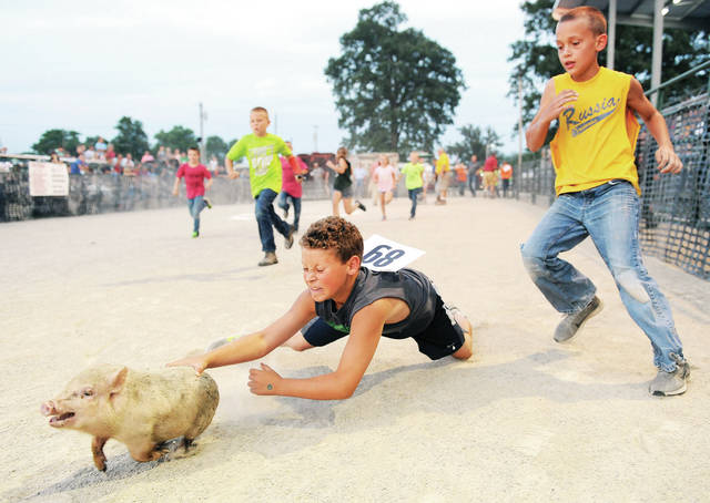 Riley Brewer, left, of Anna, son of Ryan and Nicole Brewer, dives for a baby pig followed by Abraham Hoehne, 9, of Russia, son of Jeff and Maria Hoehne, during the pig and calf and sheep scramble at the Shelby County Fair on Friday, July 26.