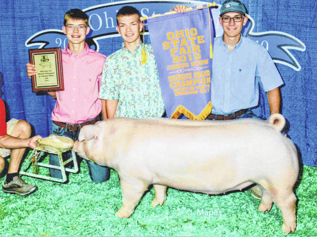 Conner Smock, 16, won the Junior Reserve Champion Chester White Gilt competition at the Ohio State Fair. He is the son of Phil and Mary Lee Smock, of Botkins, and is a member of the Botkins Livestock 4-H Club.