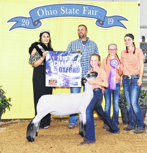 Madison Shatto won the the Grand Champion Oxford at the 2019 Ohio State Fair Open Sheep Show. She is the daughter of Jason and Heather Shatto, of Fort Loramie, and is a member of the Fort Loramie Livestock 4-H Club.