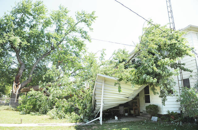 A large portion of a tree broke off on a neighbor's property and fell onto a house on the 900 block of Michigan Street during the storm that came through town on Wednesday. The tree destroyed a patio canopy.
