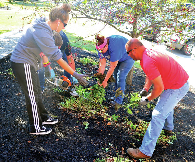 Landscaping students from the Upper Valley Career Center, Mercedez Hohanson, a senior from Piqua Christian School, left, and Brittany Kuesis from Jackson Center High School, assist Ross Snodgrass and Tom Lillicrap of Lillicrap Timber & Mulch of Piqua in performing some fall grounds and landscaping work at the career center on Tuesday.