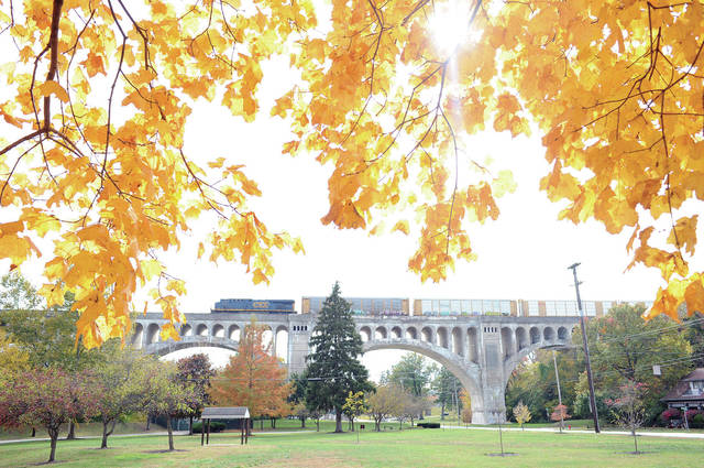 A train crosses the Big Four Bridge framed by yellow fall leaves on Thursday, Oct. 24.
