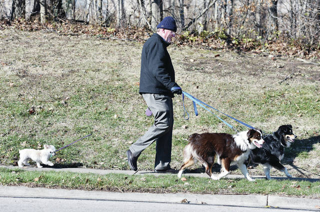 Robert McDevitt, of Sidney, walks his dogs, left to right, Baby, Honey and Muffin along Plum Ridge Trail on Wednesday, Dec. 4. Muffin being a much older dog with shorter legs gets a leash that can extend so she can lag behind the much faster dogs. Baby is a teacup maltipoo. Honey and Muffin are Australian shepherds.