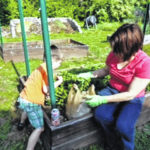 Gardening season kicks off at the People's Garden