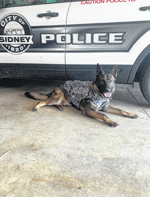 K-9 Kash is wearing his new bullet and stab protective vest.
