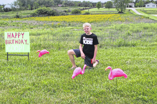 "Cooper Echols, of Sidney, got ""flocked"" for his 12th birthday. His family filled his yard with pink flamingos and then held a surprise birthday parade was held because of the COVID-19 pandemic."