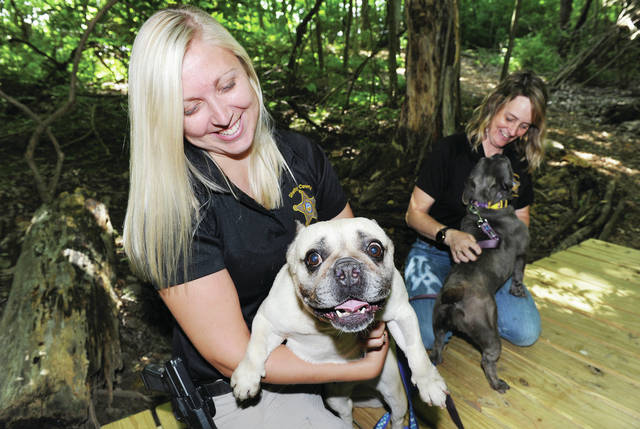 On Wednesday, June 17, Shelby County Dog Warden Kelli Ward, left, and Shelby County Animal Shelter staff member Chastity Crowder, of Lockington, display two of the French bulldogs that were rescued from a house fire on March, 26 2019. Eighteen French bulldogs were rescued from the house fire though one later died from injuries associated with the fire. The 17 remaining dogs were taken away from Grazyna Latocha, of Sidney, after she was found guilty of cruelty against companion animals. The Shelby County Animal Shelter just finished taking in over 200 adoption applications for the dogs. A random number generator will be used to determine who gets to adopt a dog. Only one dog will be allowed to each winner. The adoption fee is $300.