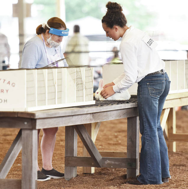 Miah Huelskamp, right, 13, of Maplewood, daughter of Jessica Guillozet and Ed Huelskamp, has her rabbit judged by Jacinta Taulbee at the Shelby County Fair on Thursday, July 30.