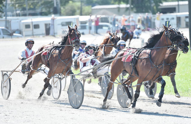Horses and their drivers speed around the grandstand track during harness races at the Shelby County Junior Fair on Wednesday. The racing took place without spectators, which drivers said was probably better for horses.