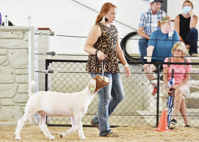 Meg Russell, 17, of Botkins, daughter of Mark and Holly Russell, shows her market goat at the Auglaize County Fair on Monday, Aug. 3.
