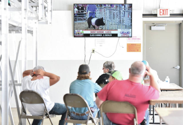 People watch the market barrow show live on a video stream at the Auglaize County Fair on Wednesday, August 5.
