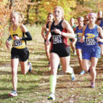 Cross country: Anna boys, Fort Loramie girls win SCAL titles