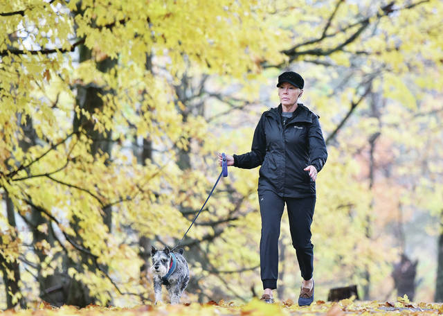 Helen Goins, of Sidney, walks her schnauzer, Duke, under a canopy of yellow leaves at Tawawa Park on Wednesday, Oct. 21. Goins says she walks with Duke at Tawawa Park everyday and prays. Duke goes everywhere with Goins including any trips out of town.