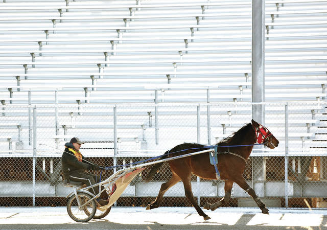 David Meyer, of Sidney, drives his 2-year-old horse, Heaven Onabeach, past the empty grandstand at the Shelby County Fairgrounds on Tuesday, Jan. 19. Onabeach will be running the first race of its life this summer when the county fairs begin.